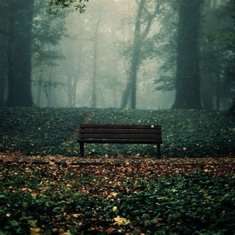 lonely bench 8tracks radio gloomy days 12 songs free and music