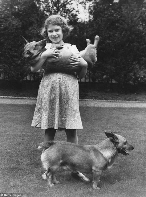 corgis queen elizabeth the queen s corgis holly and willow could be the last for elizabeth daily mail online