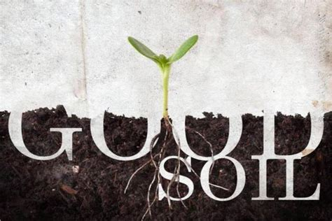 church planting in post christian soil theology and practice books bad soil