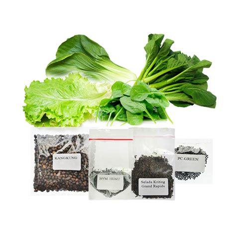 Jual Bibit Sayuran Kangkung jual jirifarm hidroponik 09354 paket 2 bibit tanaman