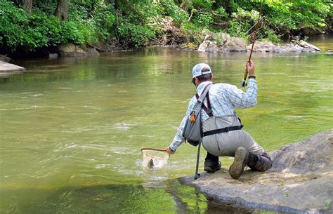 etang archives p 234 che 224 la mouche helen ga trout fishing unicoi outfitters fly fishing trout
