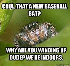 Misunderstood Spider Meme 16 Pics - misunderstood spider meme the best of the misunderstood