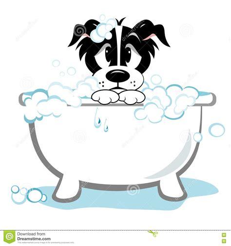 elevated alt in dogs wash tub kostenloses foto waschbrett waschen wanne alt photos of pioneer rv