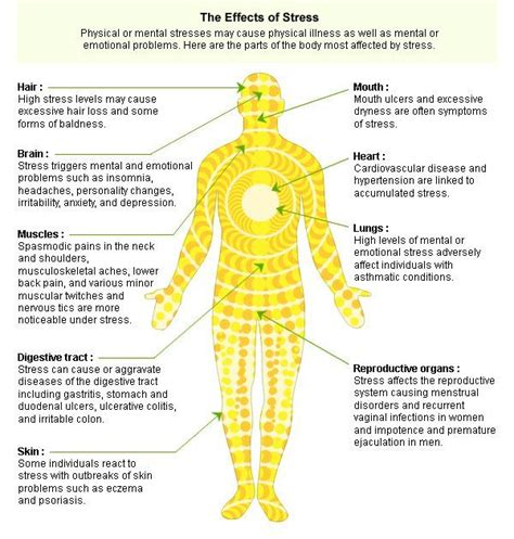 Can Emotional Healing Cause Physical Detox by This Chart Outlines Just A Few Of The Many Ways Stress