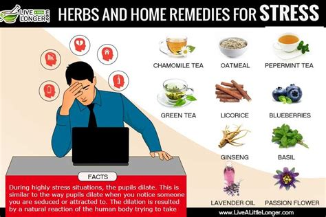 20 home remedies for stress anxiety disorder