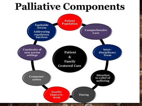 Comfort Hospice And Palliative Care Geriatric Population Pain And Palliative Care For The