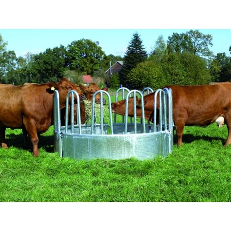 Hay Racks For Horses by Hay Rack Standard For Cattle Jumps For Sale
