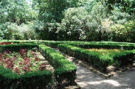 Magnolia Gardens On by Garden At Magnolia Plantation Picture Of Magnolia