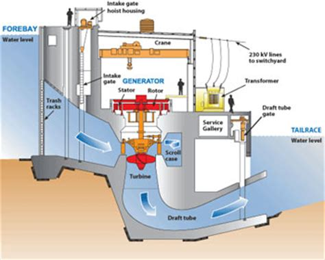 diagram of a hydroelectric dam and powerhouse producing electricity