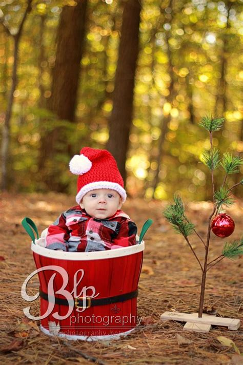 6 month christmas photos baby 3 month 6 month photos http blpphotography net babies trees