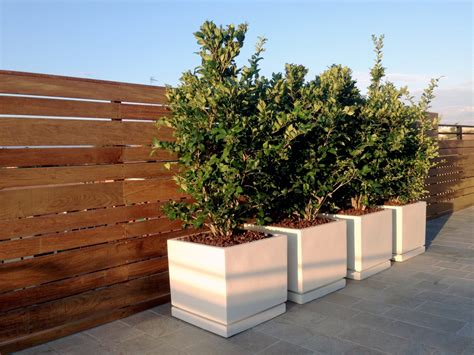progettazione terrazze realizzazione terrazze progettare un terrazzo