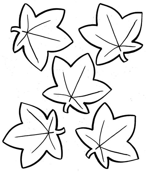 large leaf coloring page coloring home