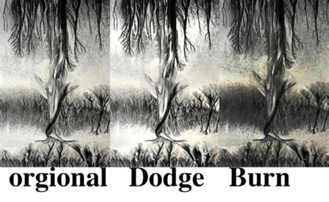 dodge and burn photography did you dodging burning can help you to