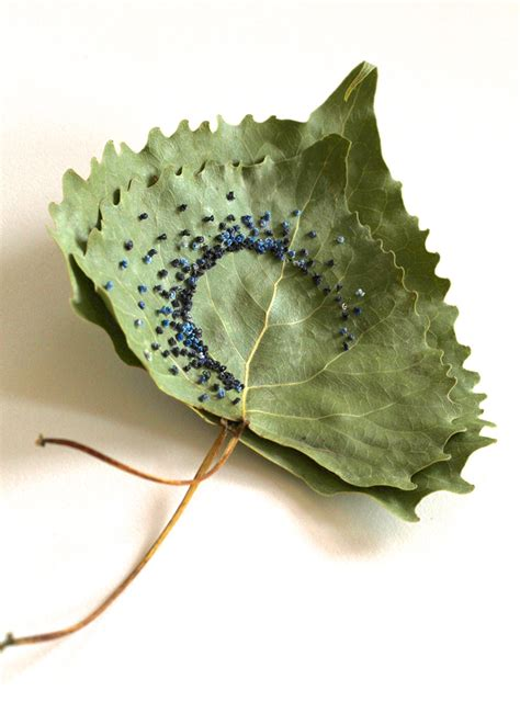 embroidery leaves new embroidered leaves by fayle colossal