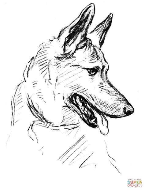german shepherd dog portrait coloring page free