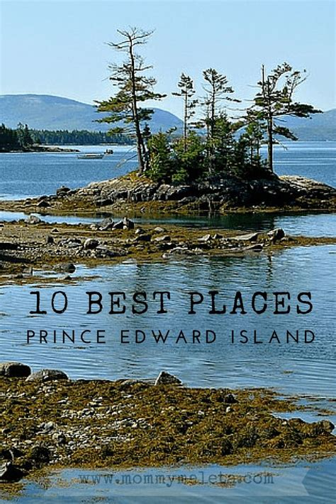 the of the natty newfie the thousand islands inn mysteries volume 14 books 1000 ideas about prince edward island on