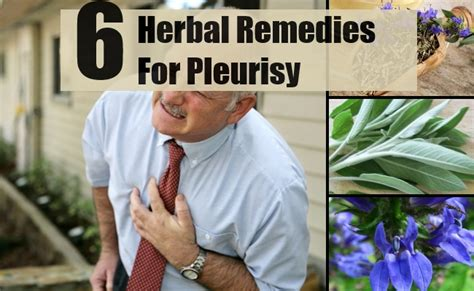 6 amazing herbal remedies for pleurisy how to treat