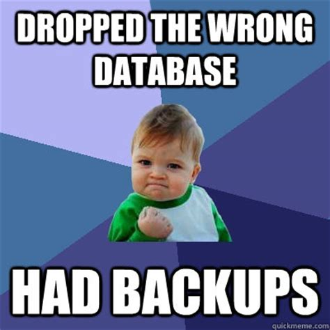 Meme Data Base - dropped the wrong database had backups success kid
