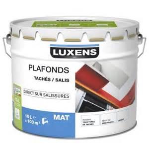 peinture plafonds luxens mat 10l leroy merlin