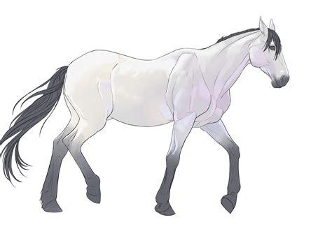 Modele Dessin Cheval dessin cheval et cavalier