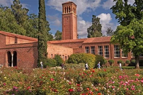 California State Chico Mba Ranking by Top 30 Masters Of Science In Nursing Msn Degrees