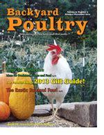 healthy chickens bulletin backyard poultry magazine