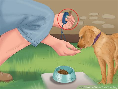 how to clicker a puppy how to clicker your 8 steps with pictures wikihow