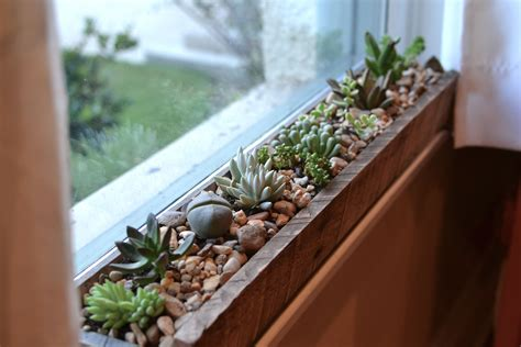 window sill planter indoor windowsill succulent garden kitchen window sill window