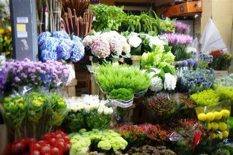 fiori cagliari provincia di carbonia iglesias ingrosso fiori e piante