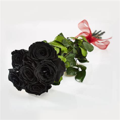 A Dozen Black Roses real black roses pictures www pixshark images