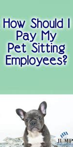 Should I Let A Company Pay For My Mba by How Should I Pay My Pet Sitting And Walking Employees