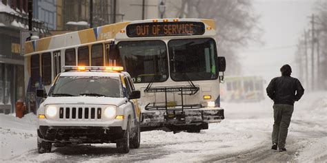 bed bugs halifax halifax bus bed bug discovery prompts commuter to strip in snow