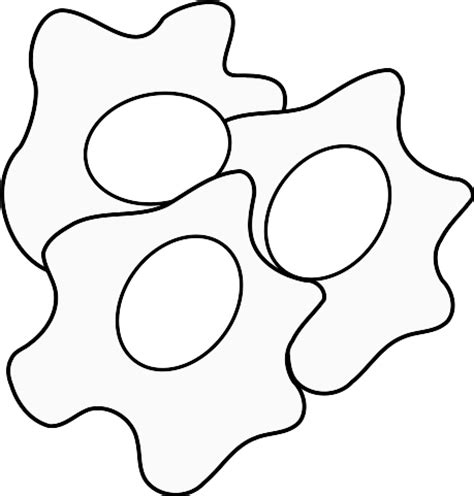fried egg coloring page fried egg drawing clipart panda free clipart images