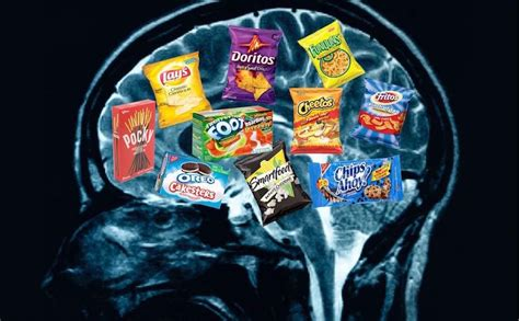How Junk Food Changes our Brain Chemistry and Makes us Addicted