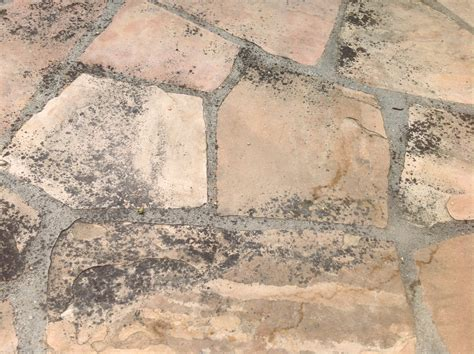 flagstone patio cleaning refinishing in