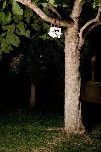 Backyard Bat House by 1000 Images About Bat Houses On Bats Bat Box And Index Page