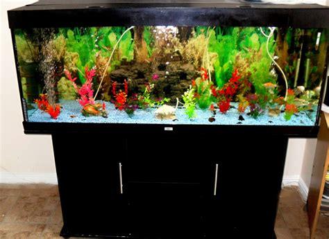 Juwel Cabinet Freshwater Fish Tank Setup Freshwater Fish Tank Setup