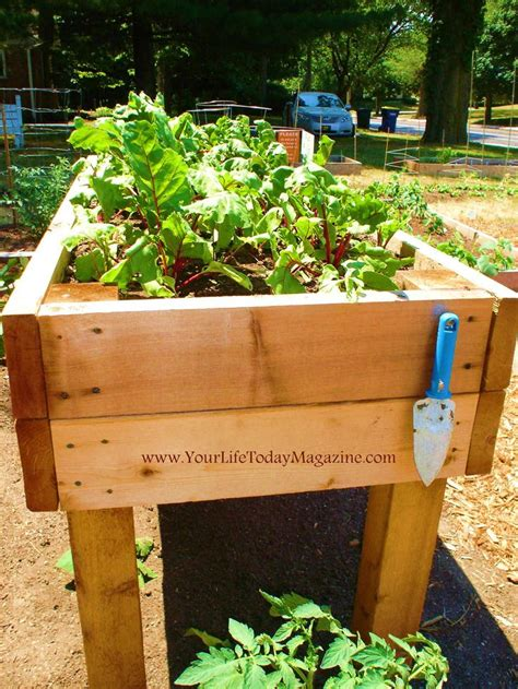 raised garden beds on legs 1000 images about raised garden bed w legs on