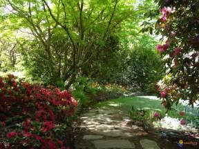 photo jardin paysager 224 leura australie