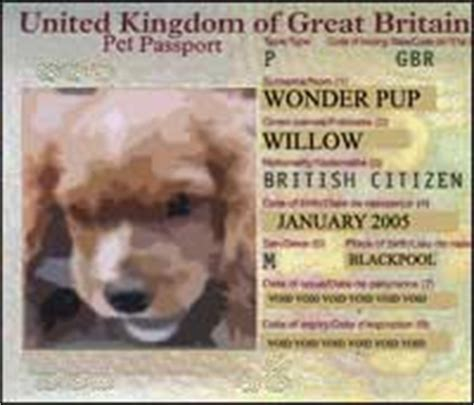 puppy passport travel europe