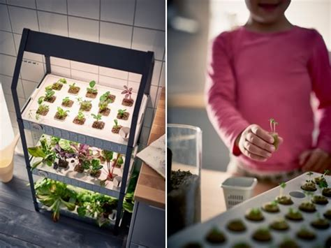 Kitchen Herb Garden Kit by Ikea Joins The Hydroponic Hype