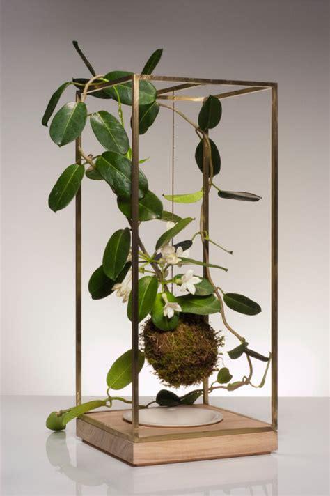 sculptural plant bondage  bring nature  digsdigs