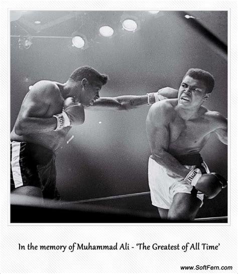 muhammad ali s greatest fight cassius clay vs the united states of america ebook sers blog video in the memory of muhammad ali the