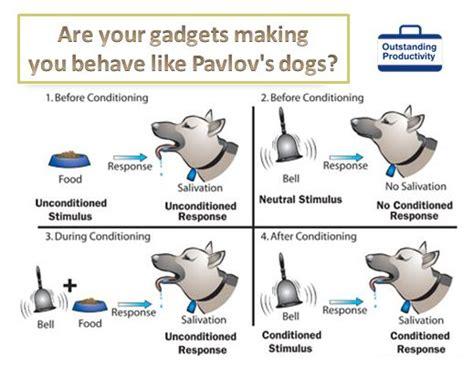 pavlov dogs opiniones de pavlov s