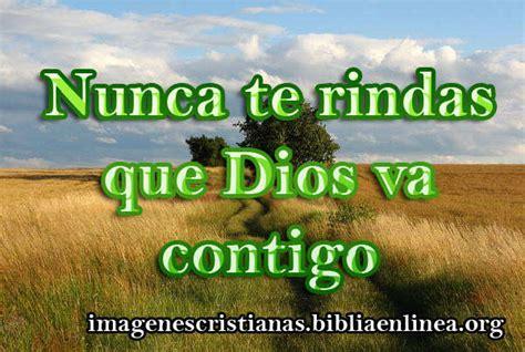 imagenes cristianas no te rindas nunca te rindas que dios va contigo imagenes cristianas
