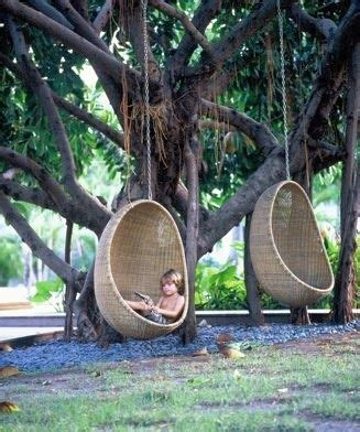 backyard swings and a really cool tree the skateboard