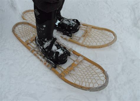 snow shoes happy on the taiga an update from the