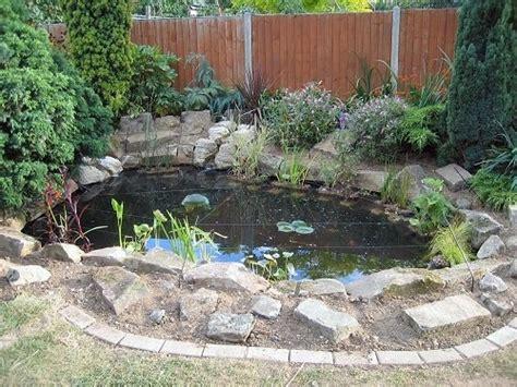 coy pond home