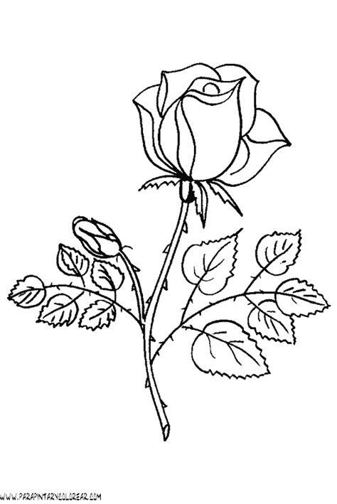 imágenes de rosas lindas para dibujar rosas para dibujar tattoo pictures to pin on pinterest