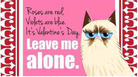 cat valentines card s day cards of the grumpy cat 18 pics
